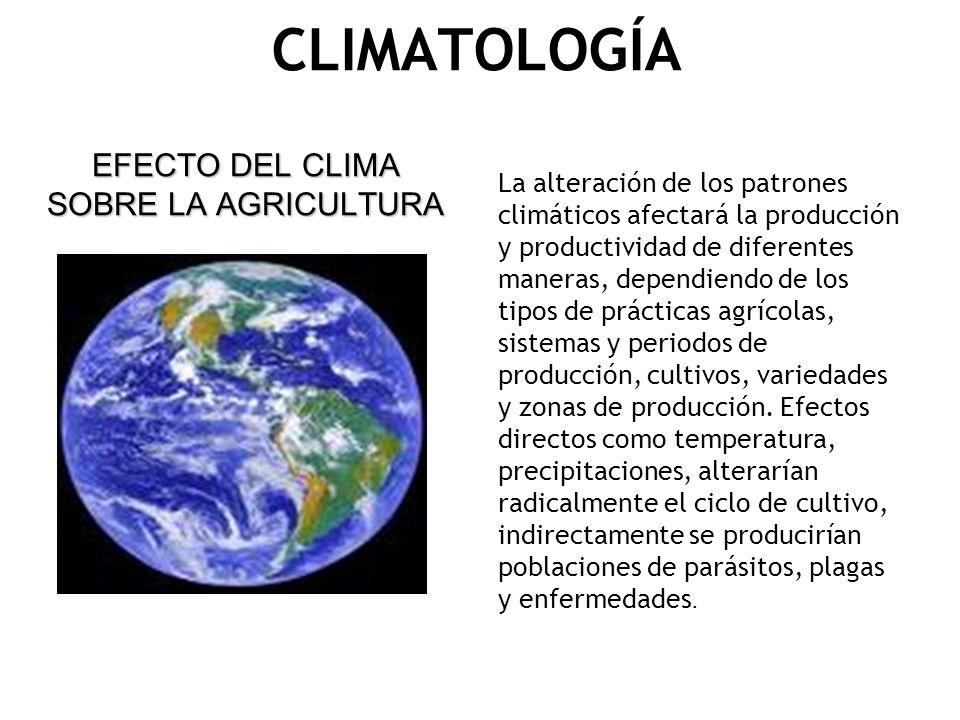 CLIMATOLOGÍA EFECTO DEL CLIMA SOBRE LA AGRICULTURA La alteración de los patrones climáticos afectará la producción y productividad de diferentes maner