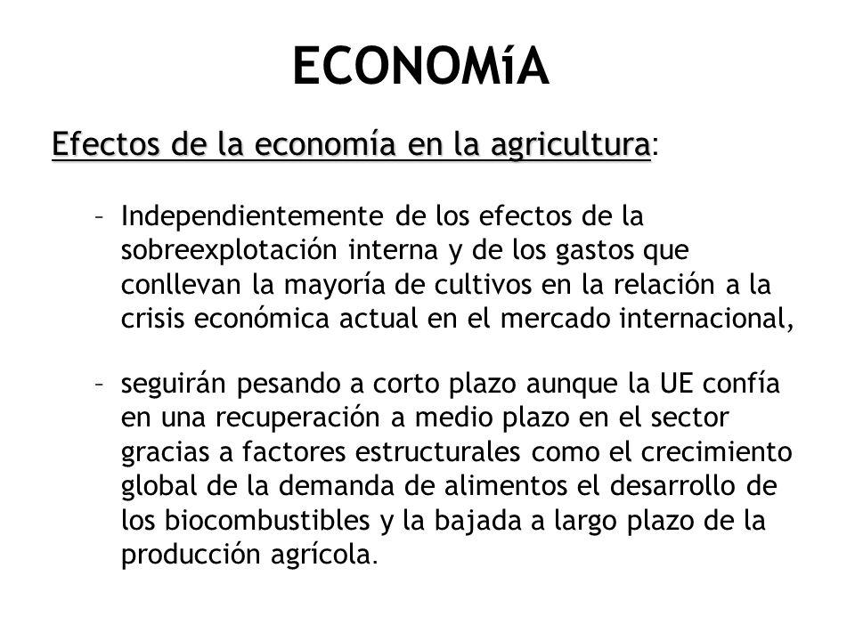 ECONOMíA Efectos de la economía en la agricultura Efectos de la economía en la agricultura : –Independientemente de los efectos de la sobreexplotación