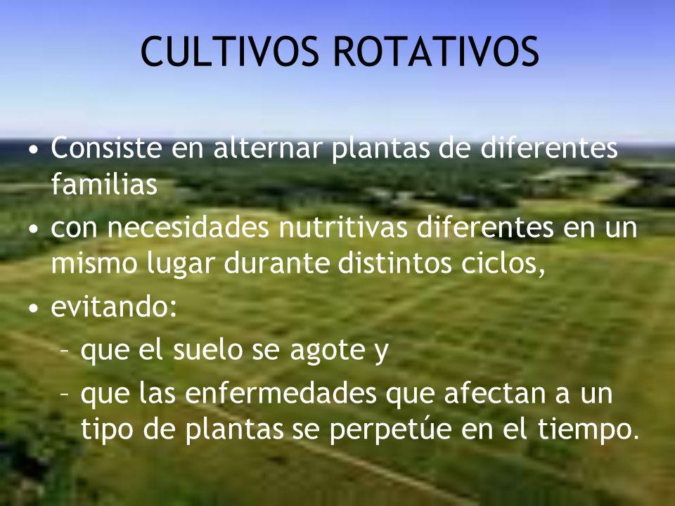CULTIVOS ROTATIVOS Consiste en alternar plantas de diferentes familias con necesidades nutritivas diferentes en un mismo lugar durante distintos ciclo