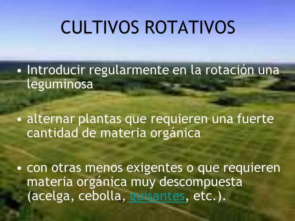CULTIVOS ROTATIVOS Introducir regularmente en la rotación una leguminosa alternar plantas que requieren una fuerte cantidad de materia orgánica con ot