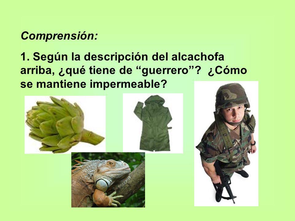 Comprensión: 1. Según la descripción del alcachofa arriba, ¿qué tiene de guerrero? ¿Cómo se mantiene impermeable?