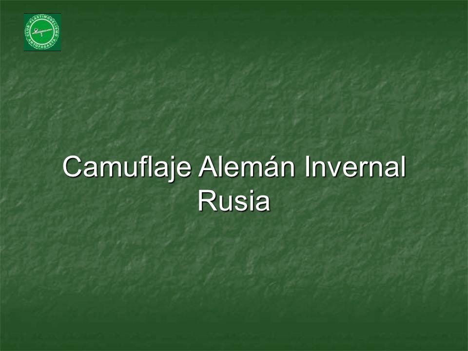 Camuflaje Alemán Invernal Rusia