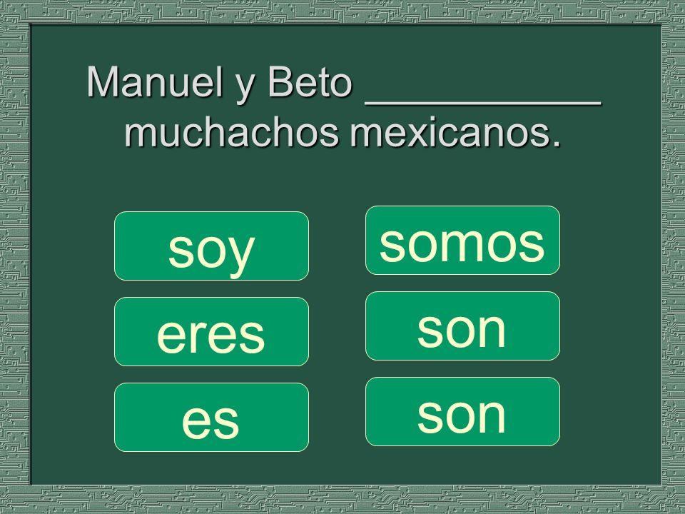 Manuel y Beto __________ muchachos mexicanos. somos son soy eres es