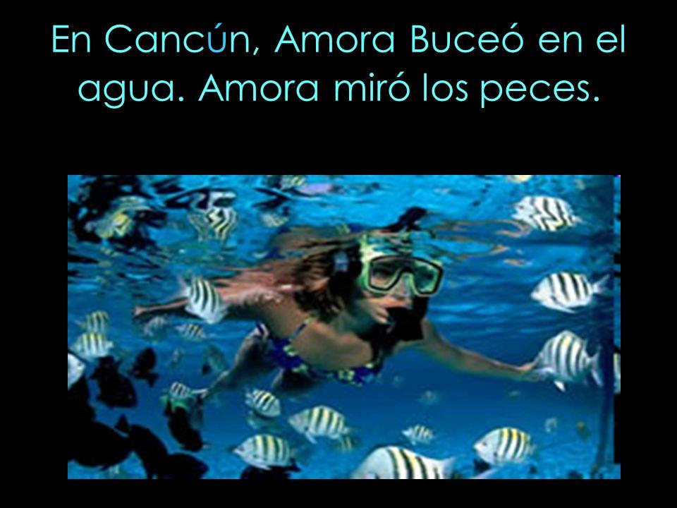 En Cancún, Amora Buceó en el agua. Amora miró los peces.