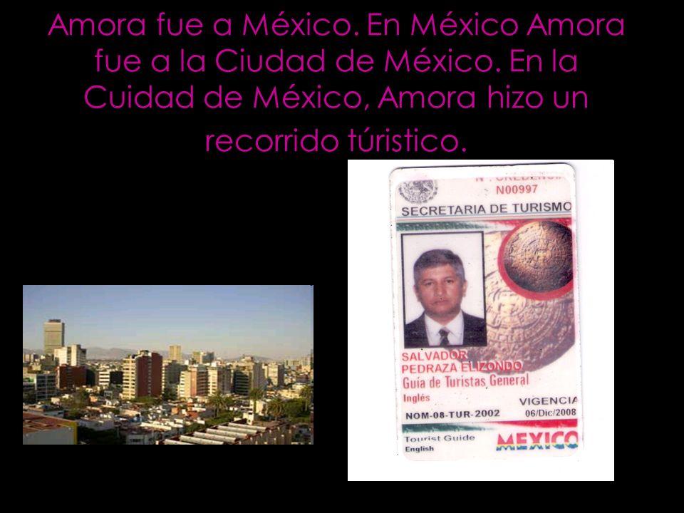 Amora fue a México. En México Amora fue a la Ciudad de México. En la Cuidad de México, Amora hizo un recorrido túristico.