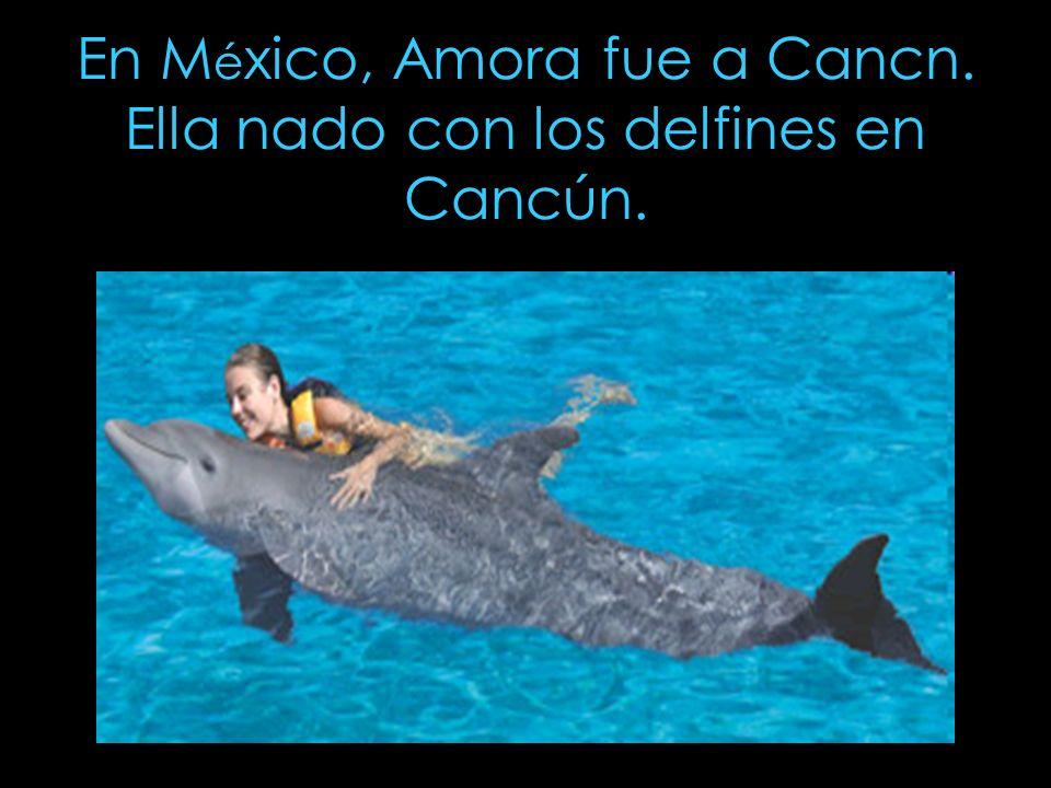 En M é xico, Amora fue a Cancn. Ella nado con los delfines en Cancún.