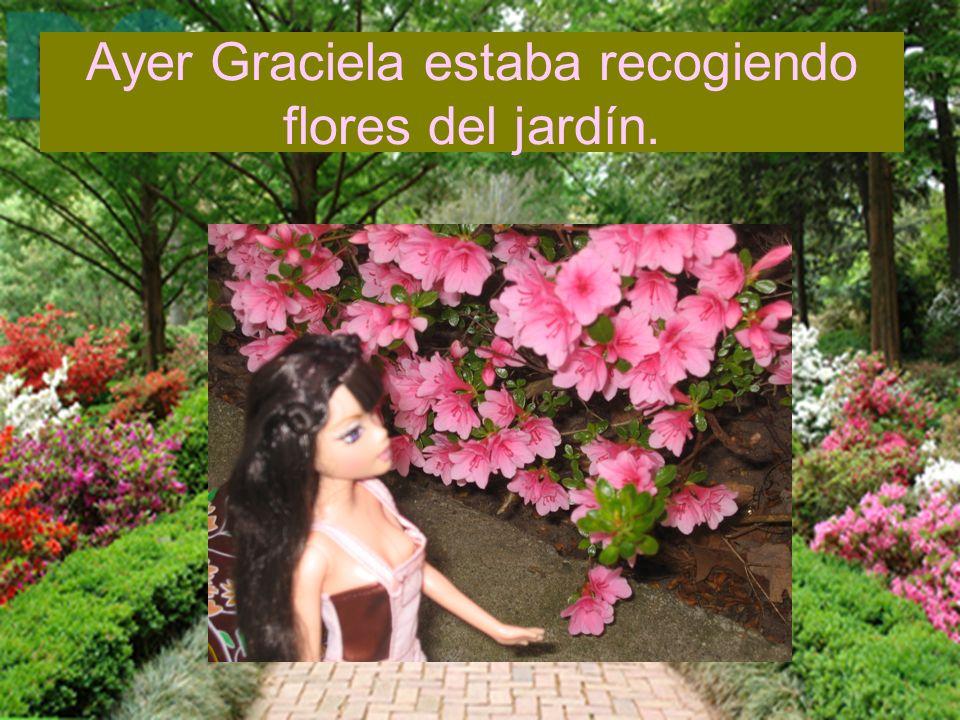 Ayer Graciela estaba recogiendo flores del jardín.