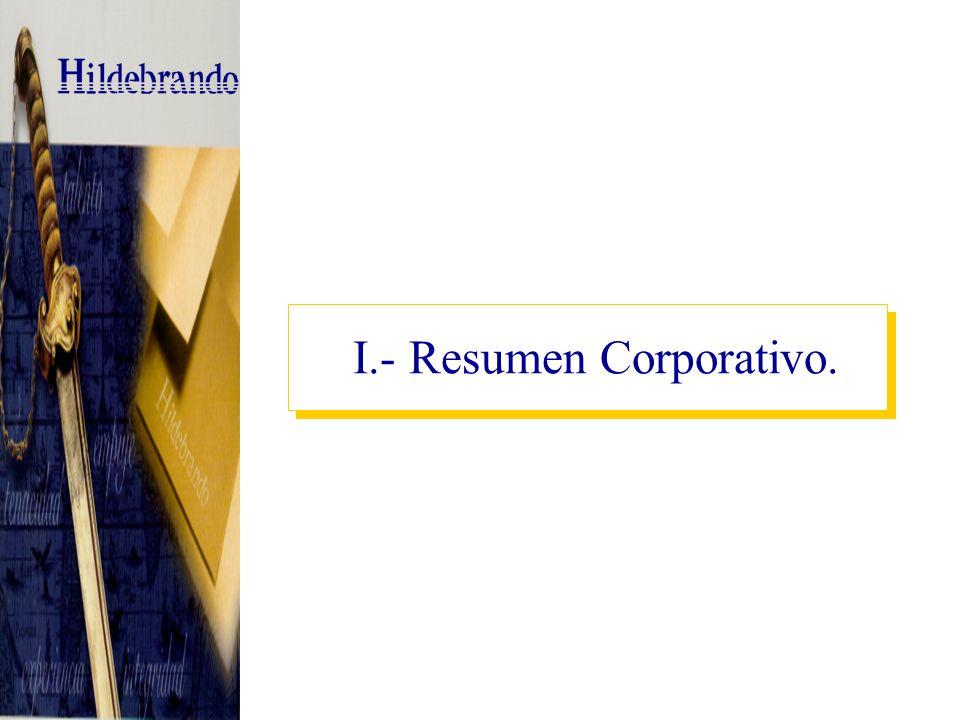 I.- Resumen Corporativo.