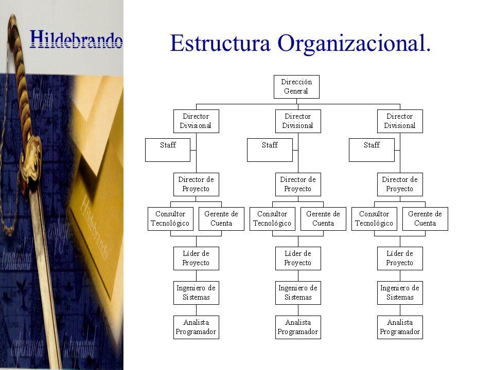 Estructura Organizacional.