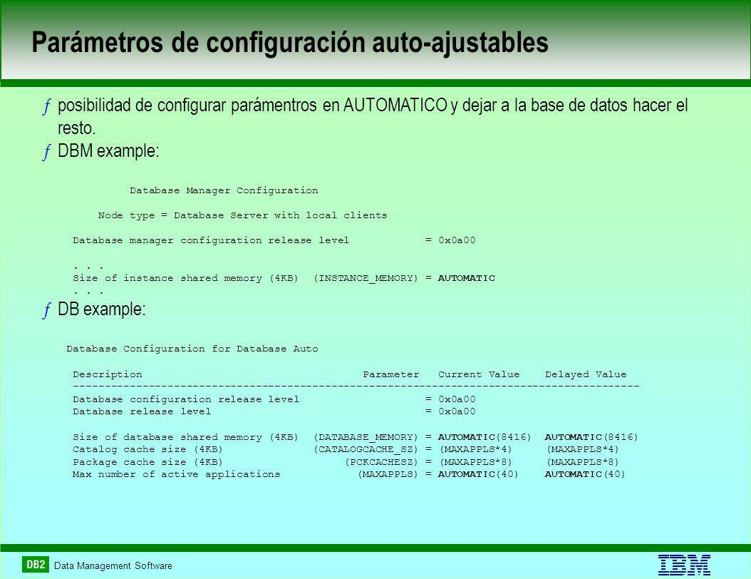 Data Management Software ƒposibilidad de configurar parámentros en AUTOMATICO y dejar a la base de datos hacer el resto. ƒDBM example: Database Manage