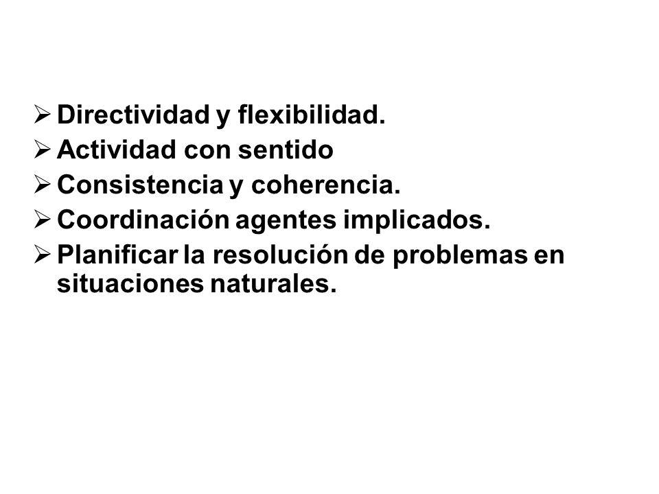 Directividad y flexibilidad. Actividad con sentido Consistencia y coherencia. Coordinación agentes implicados. Planificar la resolución de problemas e