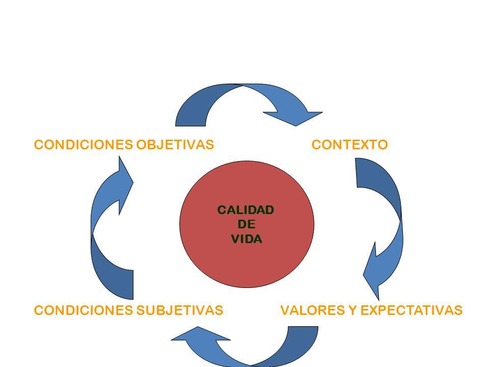 CALIDAD DE VIDA CONTEXTOCONDICIONES OBJETIVAS VALORES Y EXPECTATIVASCONDICIONES SUBJETIVAS