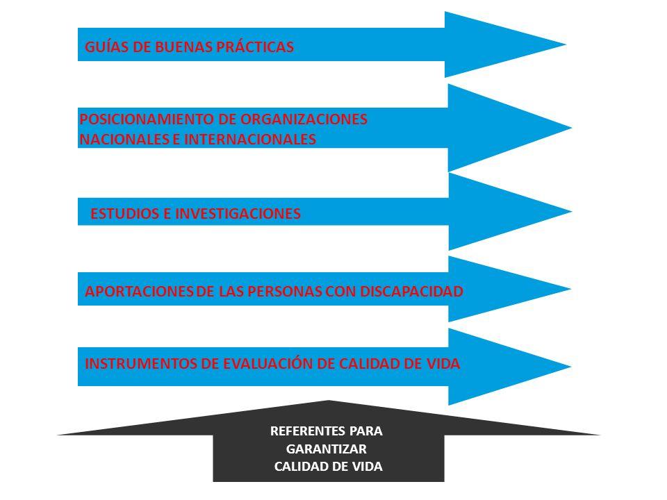 GUÍAS DE BUENAS PRÁCTICAS POSICIONAMIENTO DE ORGANIZACIONES NACIONALES E INTERNACIONALES ESTUDIOS E INVESTIGACIONES APORTACIONES DE LAS PERSONAS CON D