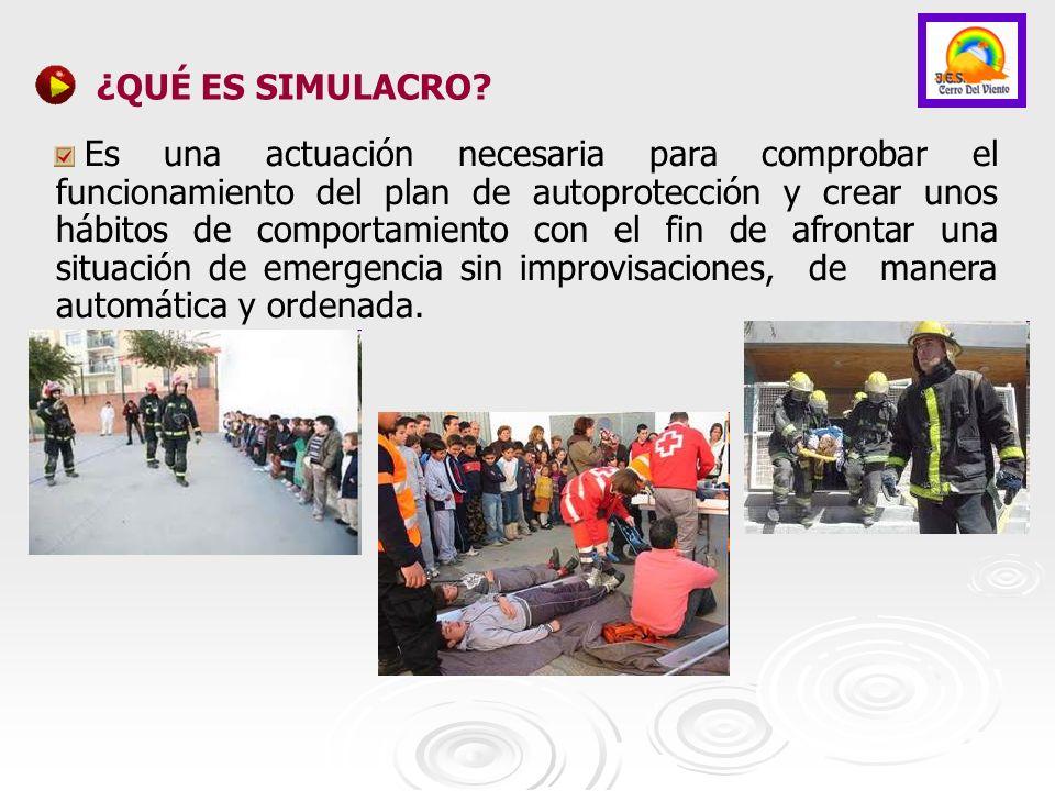 COORDINADORES DEL SIMULACRO El director del centro, D.