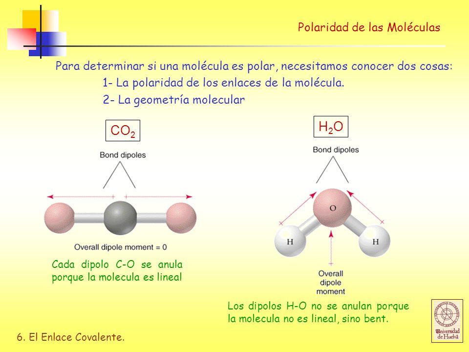 6. El Enlace Covalente. Para determinar si una molécula es polar, necesitamos conocer dos cosas: 1- La polaridad de los enlaces de la molécula. 2- La