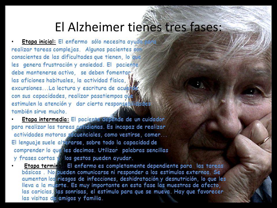 El Alzheimer tienes tres fases: Etapa inicial: El enfermo sólo necesita ayuda para realizar tareas complejas. Algunos pacientes son conscientes de las