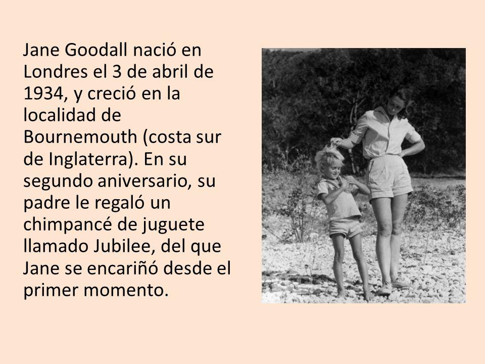 Jane Goodall nació en Londres el 3 de abril de 1934, y creció en la localidad de Bournemouth (costa sur de Inglaterra). En su segundo aniversario, su