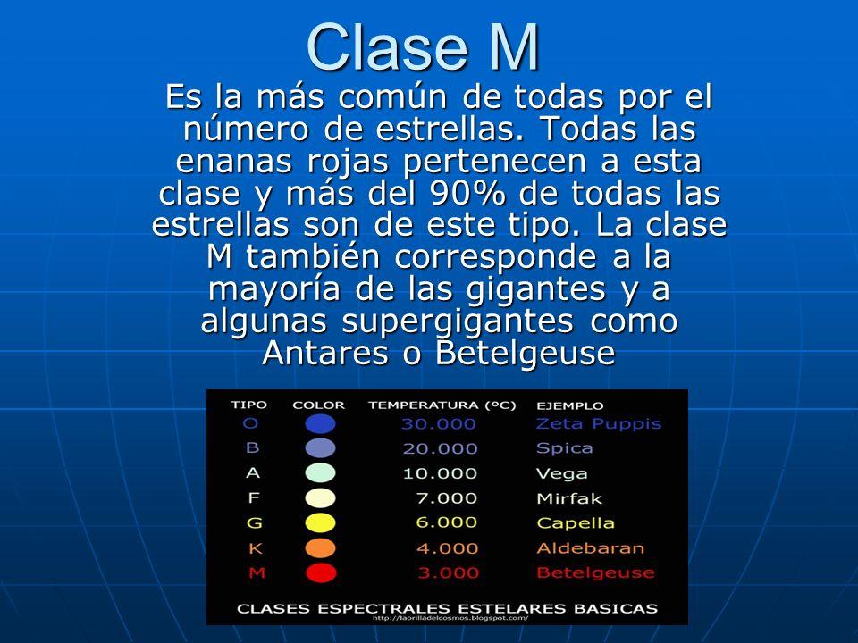 Clase M Es la más común de todas por el número de estrellas. Todas las enanas rojas pertenecen a esta clase y más del 90% de todas las estrellas son d