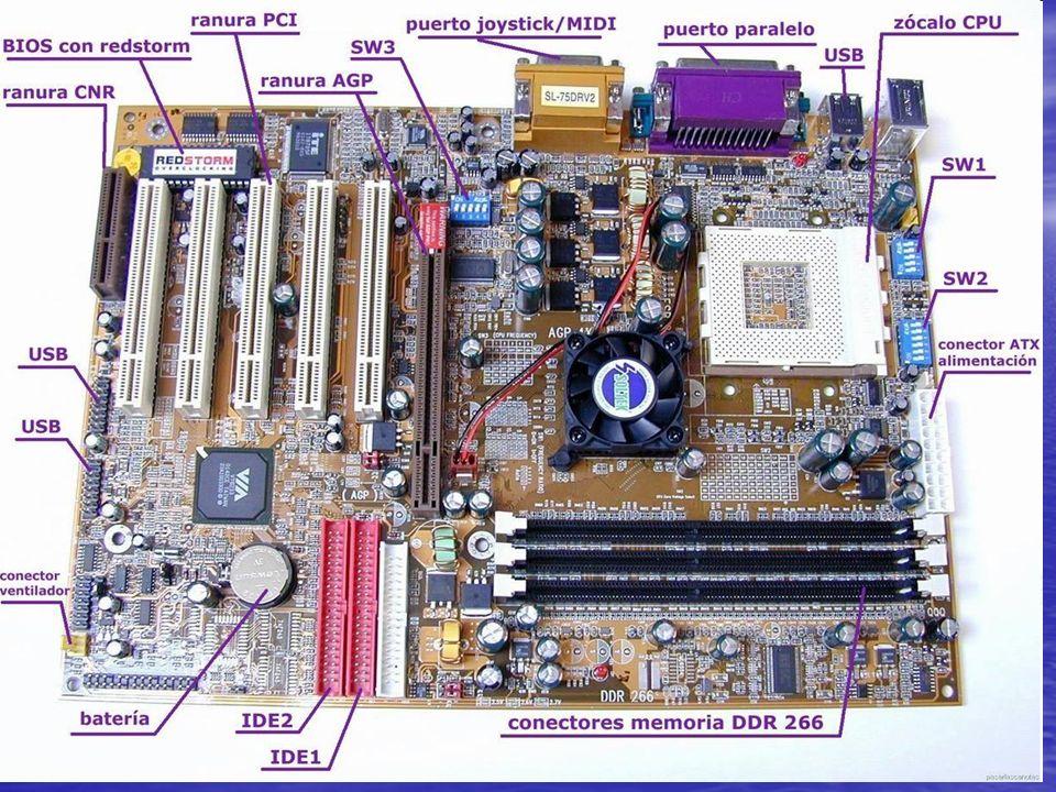-PROCESADOR: El microprocesador o simplemente procesador, es el circuito integrado central y más complejo de una computadora u ordenador; a modo de ilustración, se le suele asociar por analogía como el cerebro de una computadora.