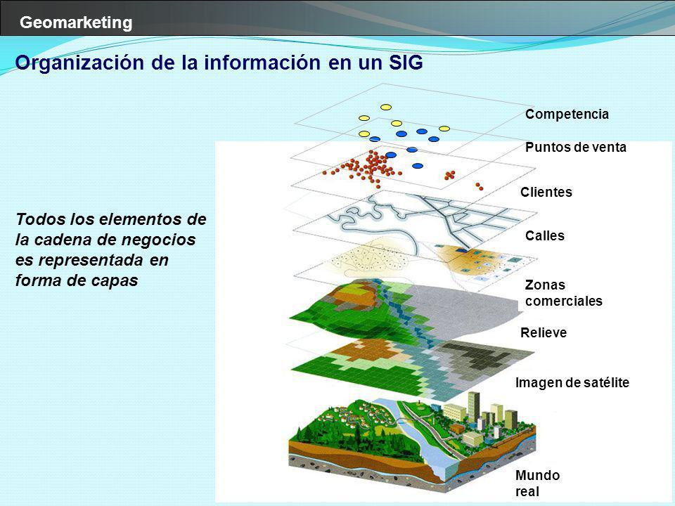 Geomarketing Mundo real Imagen de satélite Relieve Zonas comerciales Calles Clientes Organización de la información en un SIG Todos los elementos de l