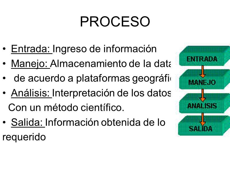 PROCESO Entrada: Ingreso de información Manejo: Almacenamiento de la data de acuerdo a plataformas geográficas Análisis: Interpretación de los datos C