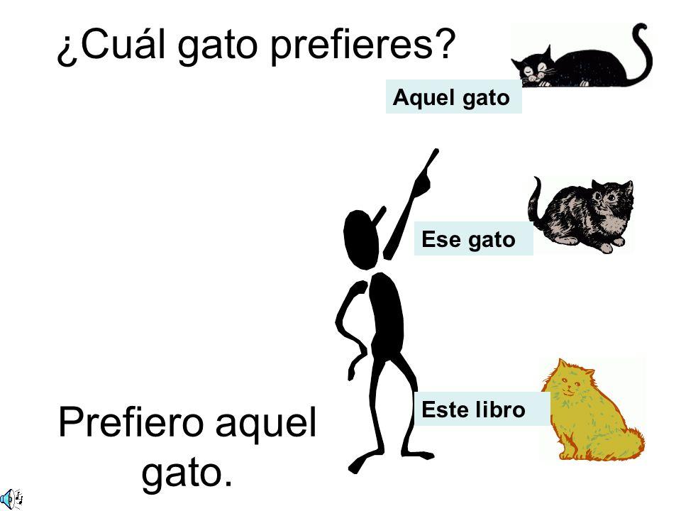 ¿Cuál gato prefieres? Prefiero aquel gato. Aquel gato Ese gato Este libro