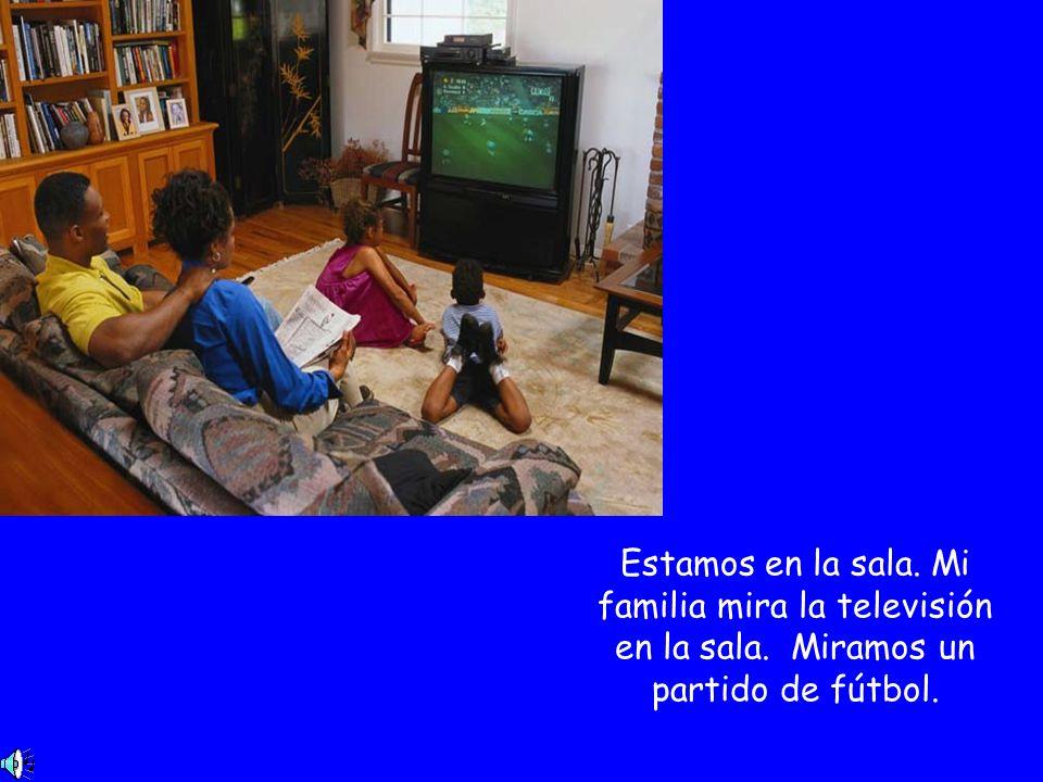 Estamos en la sala. Mi familia mira la televisión en la sala. Miramos un partido de fútbol.