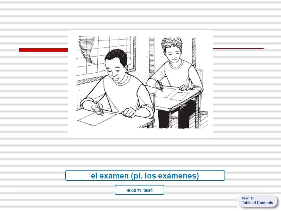 el examen (pl. los exámenes) exam, test