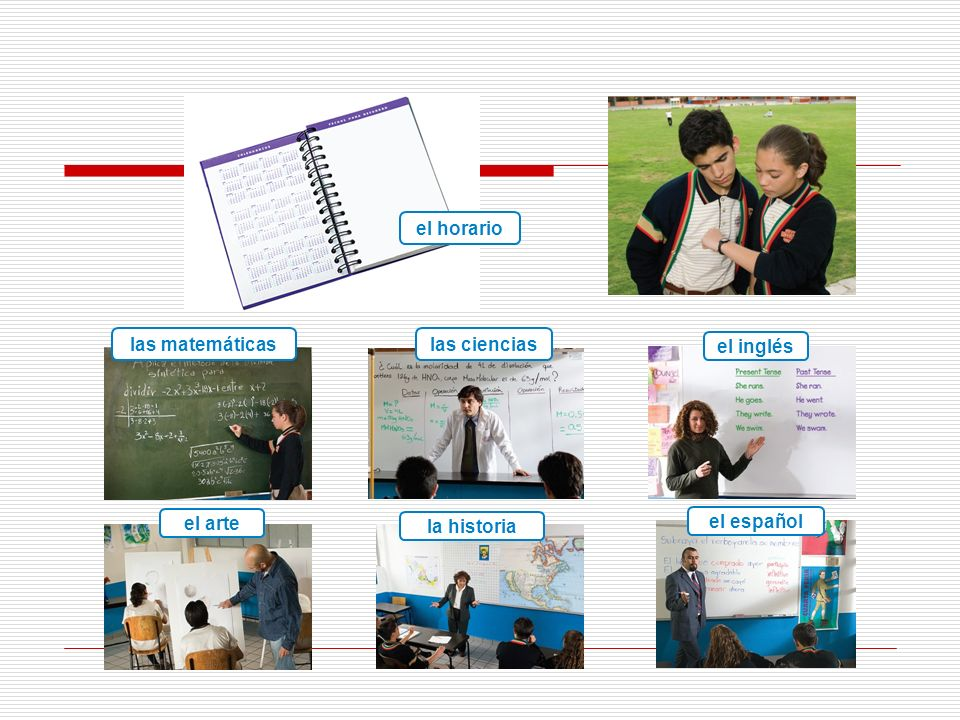las matemáticaslas ciencias el inglés el arte la historia el español el horario