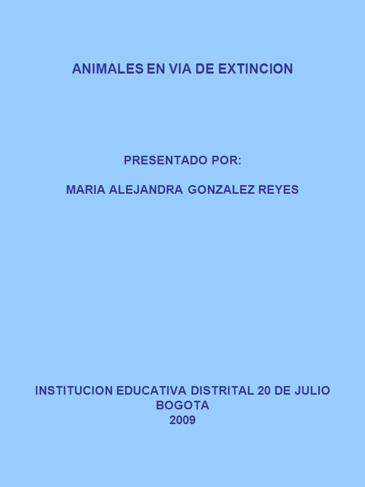 ANIMALES EN VIA DE EXTINCION PRESENTADO POR: MARIA ALEJANDRA GONZALEZ REYES INSTITUCION EDUCATIVA DISTRITAL 20 DE JULIO BOGOTA 2009