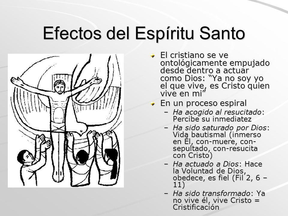 Efectos del Espíritu Santo El cristiano se ve ontológicamente empujado desde dentro a actuar como Dios: Ya no soy yo el que vive, es Cristo quien vive
