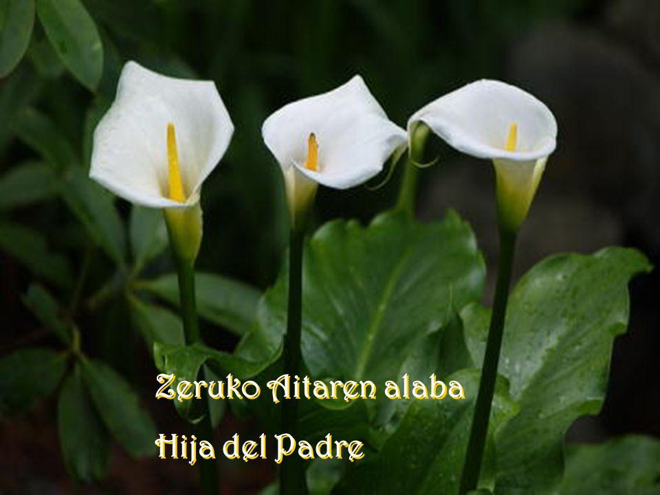 MAIATZA Mes de mayo MAIATZA Mes de mayo LOREEN HILABETEA Mes de las flores LOREEN HILABETEA Mes de las flores