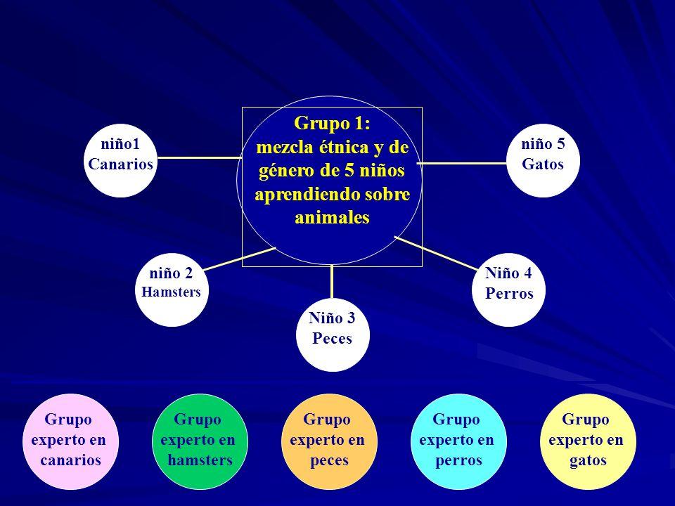Grupo 1: mezcla étnica y de género de 5 niños aprendiendo sobre animales niño1 Canarios niño 2 Hamsters Niño 3 Peces Niño 4 Perros niño 5 Gatos Grupo