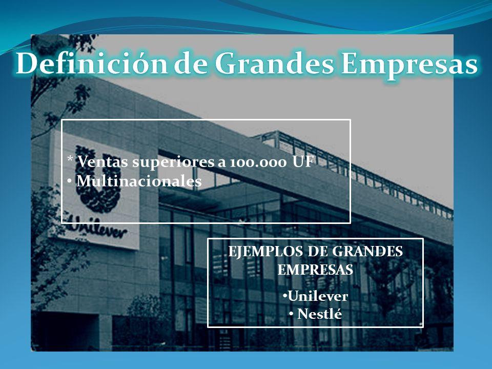 * Ventas superiores a 100.000 UF Multinacionales EJEMPLOS DE GRANDES EMPRESAS Unilever Nestlé