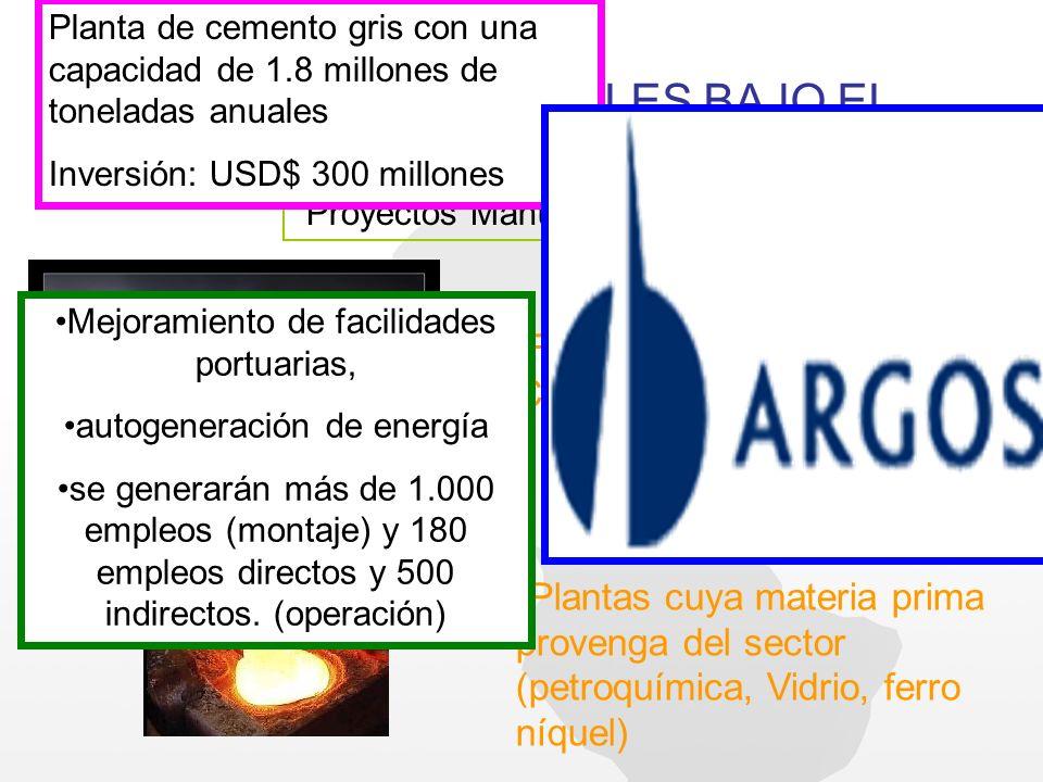 PROYECTOS FACTIBLES BAJO EL REGIMEN DE ZF HOY Proyectos Manufactureros: Fabricación Materiales de Construcción (cementeras) Plantas cuya materia prima