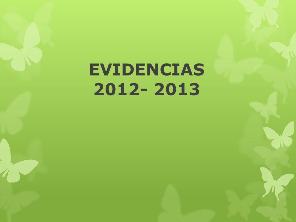 EVIDENCIAS 2012- 2013