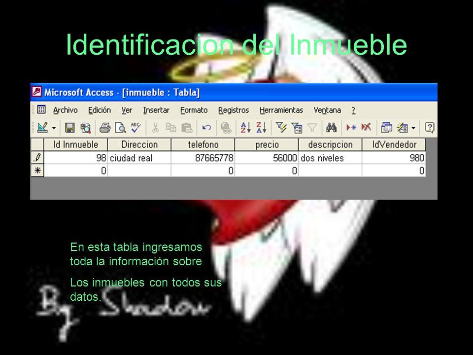 Identificacion del Inmueble En esta tabla ingresamos toda la información sobre Los inmuebles con todos sus datos.