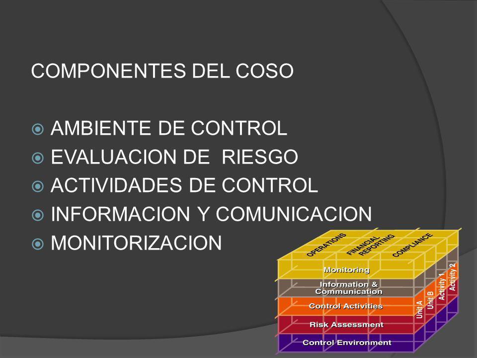 COMPONENTES DEL COSO AMBIENTE DE CONTROL EVALUACION DE RIESGO ACTIVIDADES DE CONTROL INFORMACION Y COMUNICACION MONITORIZACION