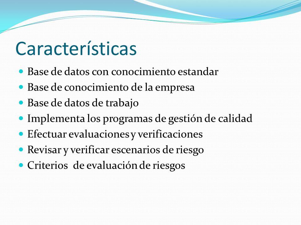Características Base de datos con conocimiento estandar Base de conocimiento de la empresa Base de datos de trabajo Implementa los programas de gestió