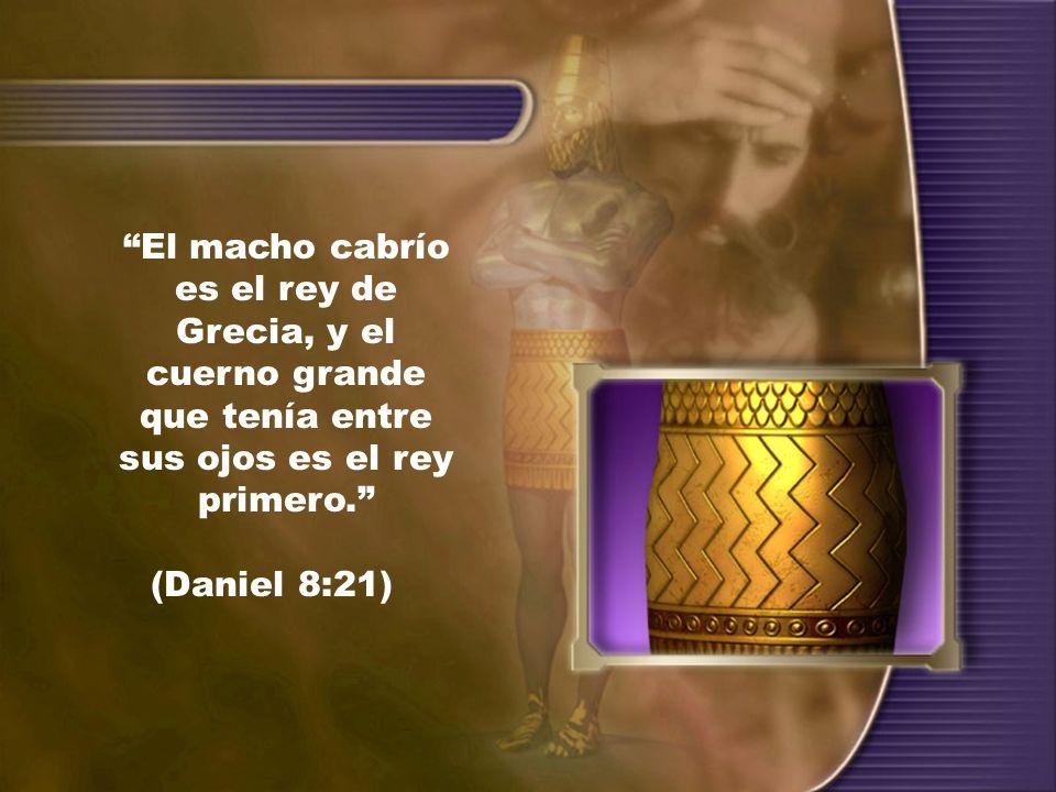 El macho cabrío es el rey de Grecia, y el cuerno grande que tenía entre sus ojos es el rey primero. (Daniel 8:21)