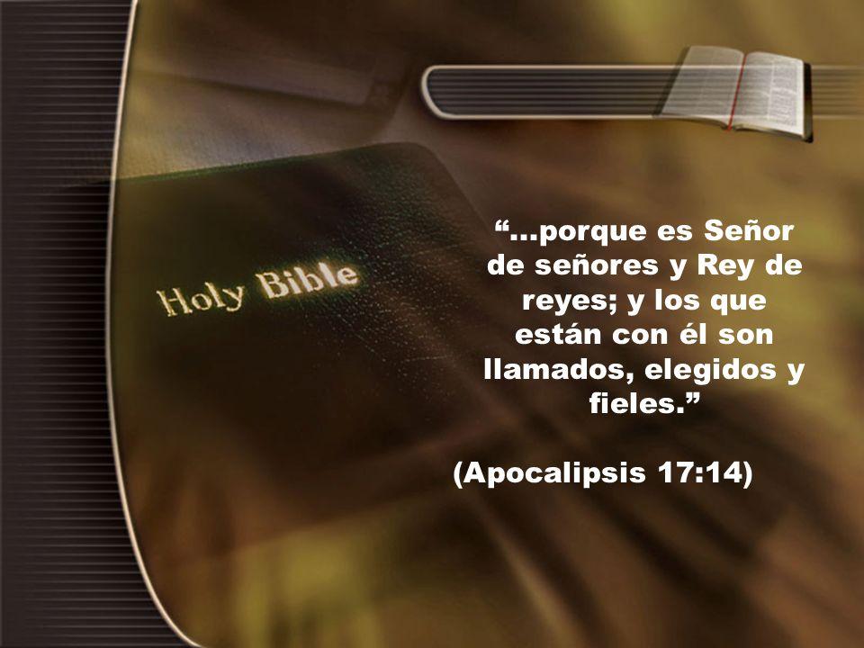...porque es Señor de señores y Rey de reyes; y los que están con él son llamados, elegidos y fieles. (Apocalipsis 17:14)