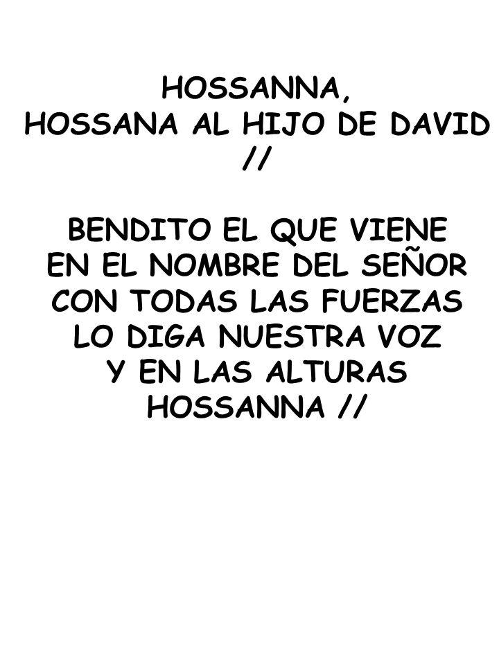 HOSSANNA, HOSSANA AL HIJO DE DAVID // BENDITO EL QUE VIENE EN EL NOMBRE DEL SEÑOR CON TODAS LAS FUERZAS LO DIGA NUESTRA VOZ Y EN LAS ALTURAS HOSSANNA