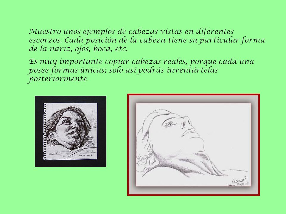 Muestro unos ejemplos de cabezas vistas en diferentes escorzos. Cada posición de la cabeza tiene su particular forma de la nariz, ojos, boca, etc. Es