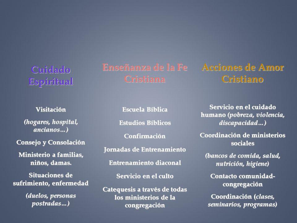 Enseñanza de la Fe Cristiana Escuela Bíblica Estudios Bíblicos Confirmación Jornadas de Entrenamiento Entrenamiento diaconal Servicio en el culto Cate