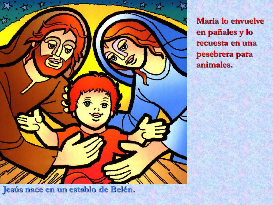 Jesús nace en un establo de Belén. María lo envuelve en pañales y lo recuesta en una pesebrera para animales.