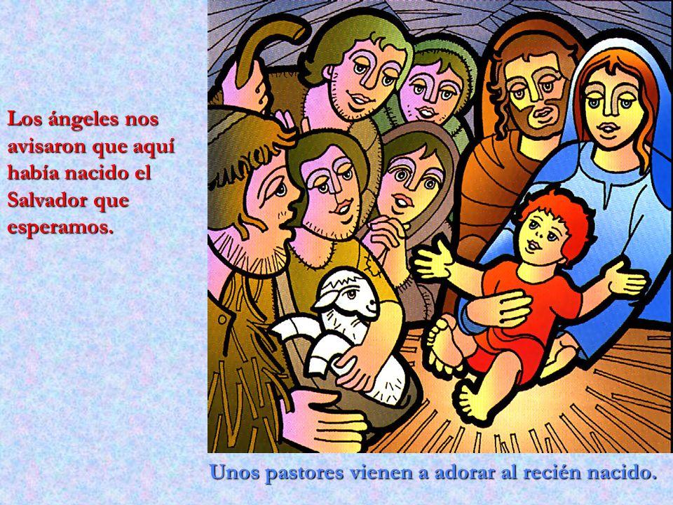 Unos pastores vienen a adorar al recién nacido. Los ángeles nos avisaron que aquí había nacido el Salvador que esperamos.