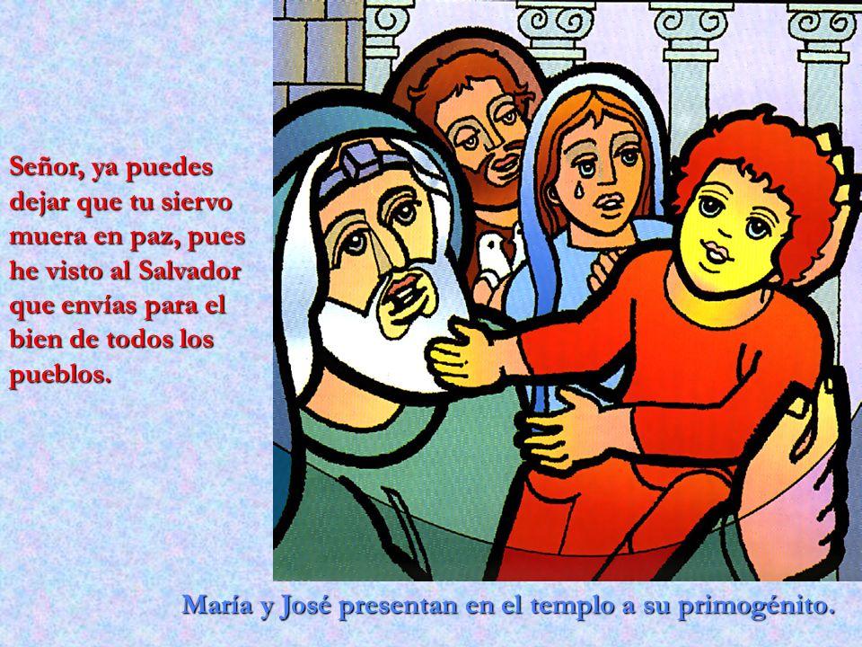 María y José presentan en el templo a su primogénito. Señor, ya puedes dejar que tu siervo muera en paz, pues he visto al Salvador que envías para el