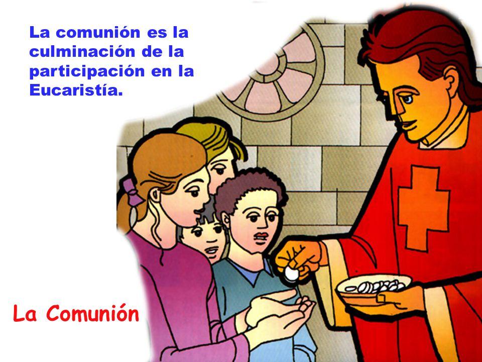 La Comunión La comunión es la culminación de la participación en la Eucaristía.