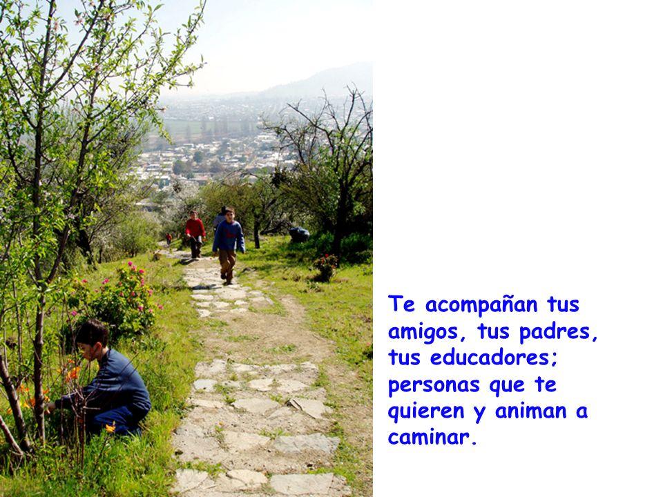 Te acompañan tus amigos, tus padres, tus educadores; personas que te quieren y animan a caminar.