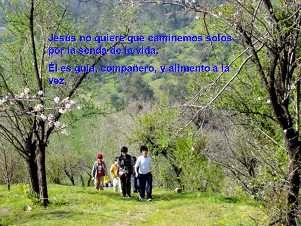 Jesús no quiere que caminemos solos por la senda de la vida. Él es guía, compañero, yalimento a la vez. Él es guía, compañero, y alimento a la vez.